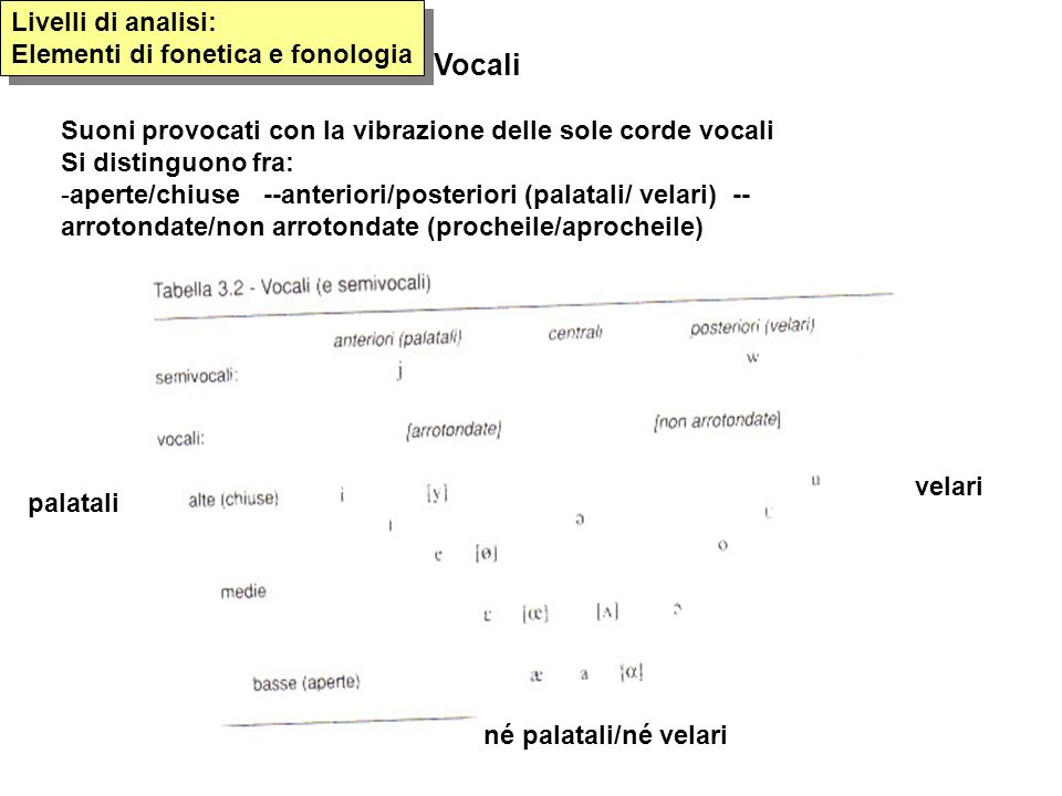 Vocali Livelli di analisi: Elementi di fonetica e fonologia