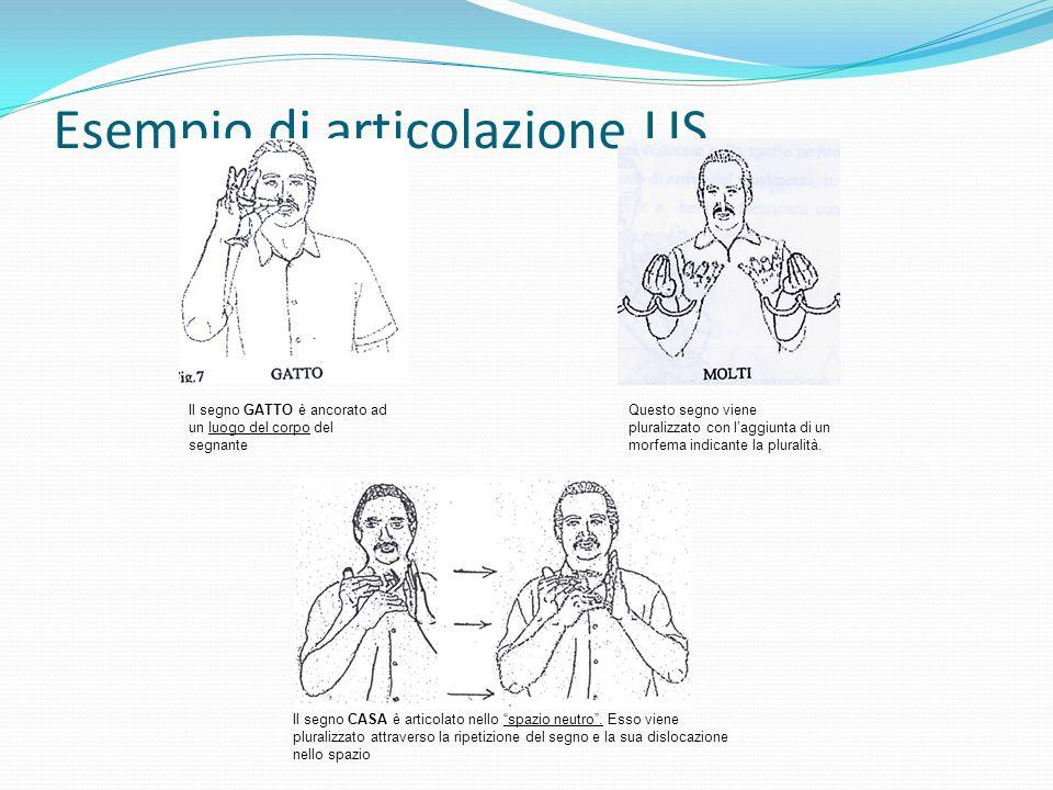 Esempio di articolazione LIS