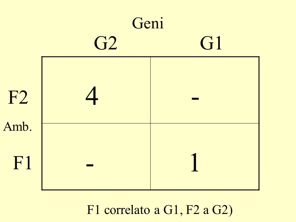 Geni +G2 G1 4 - 1 F2 + Amb. F1 F1 correlato a G1, F2 a G2)