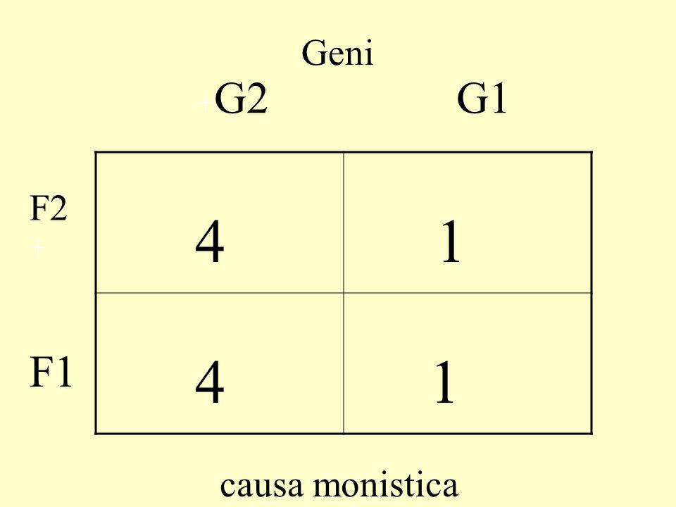 Geni +G2 G1 4 1 F2+ F1 causa monistica