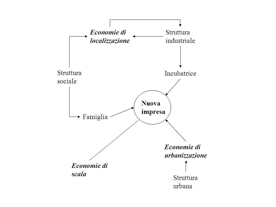 Economie di localizzazione. Struttura. industriale. Struttura. sociale. Incubatrice. Nuova. impresa.