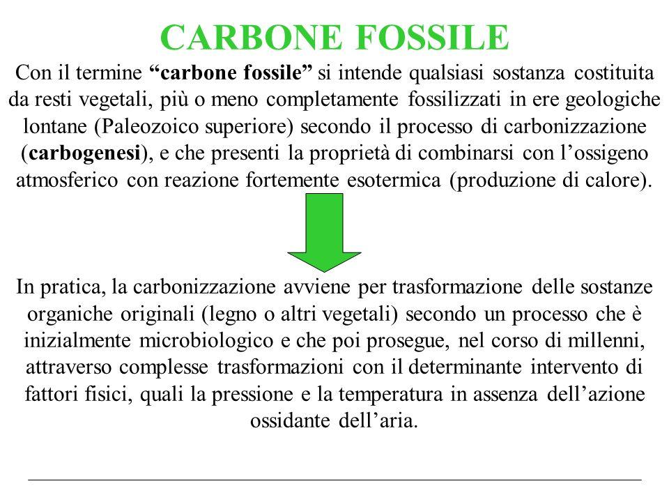 CARBONE FOSSILE Con il termine carbone fossile si intende qualsiasi sostanza costituita da resti vegetali, più o meno completamente fossilizzati in ere geologiche lontane (Paleozoico superiore) secondo il processo di carbonizzazione (carbogenesi), e che presenti la proprietà di combinarsi con l'ossigeno atmosferico con reazione fortemente esotermica (produzione di calore).