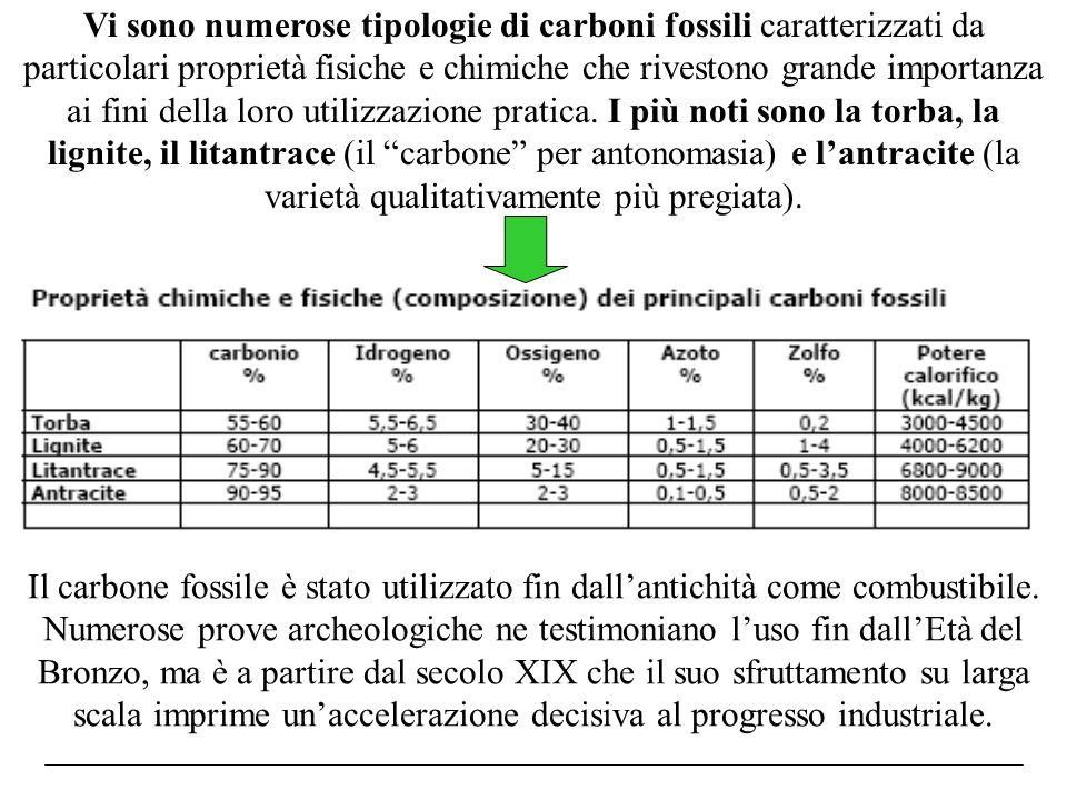 Vi sono numerose tipologie di carboni fossili caratterizzati da particolari proprietà fisiche e chimiche che rivestono grande importanza ai fini della loro utilizzazione pratica. I più noti sono la torba, la lignite, il litantrace (il carbone per antonomasia) e l'antracite (la varietà qualitativamente più pregiata).