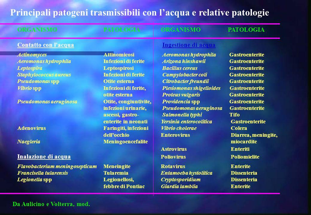 Principali patogeni trasmissibili con l'acqua e relative patologie
