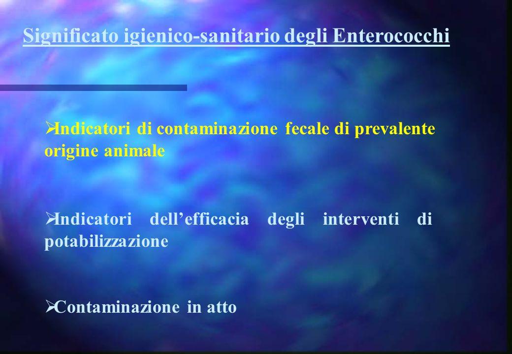 Significato igienico-sanitario degli Enterococchi