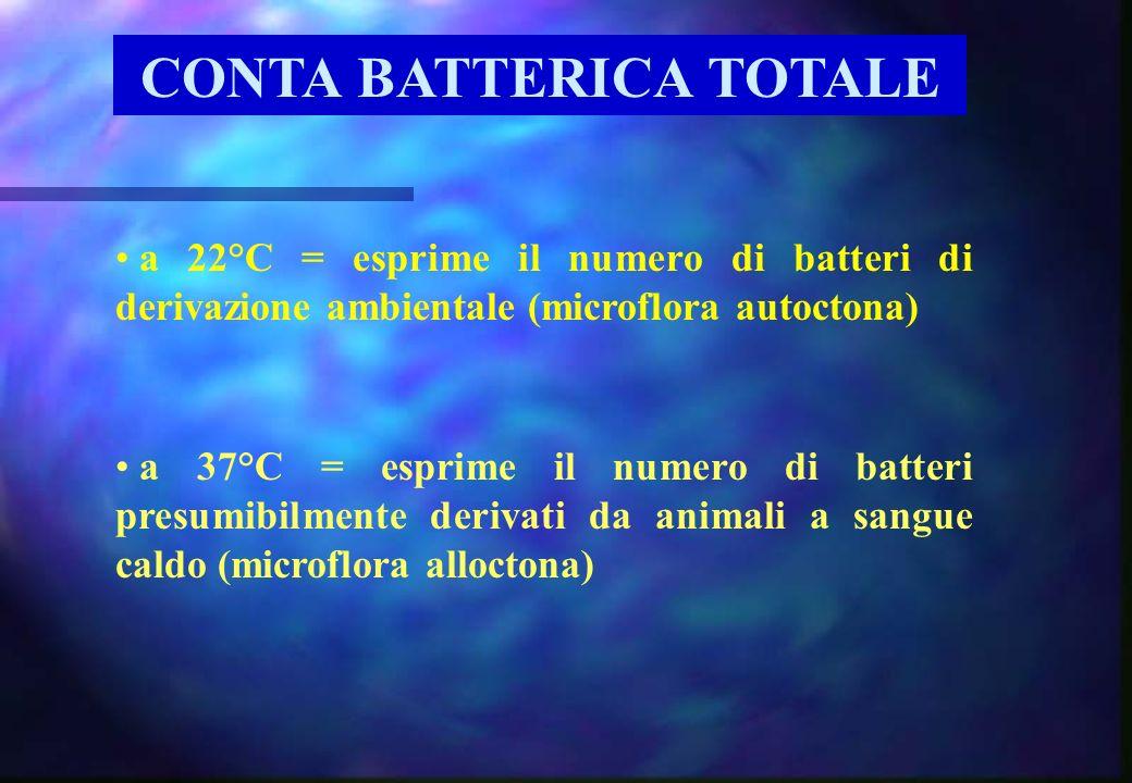 CONTA BATTERICA TOTALE