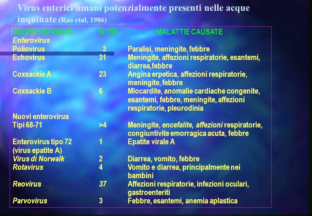 Virus enterici umani potenzialmente presenti nelle acque inquinate (Rao etal, 1986)