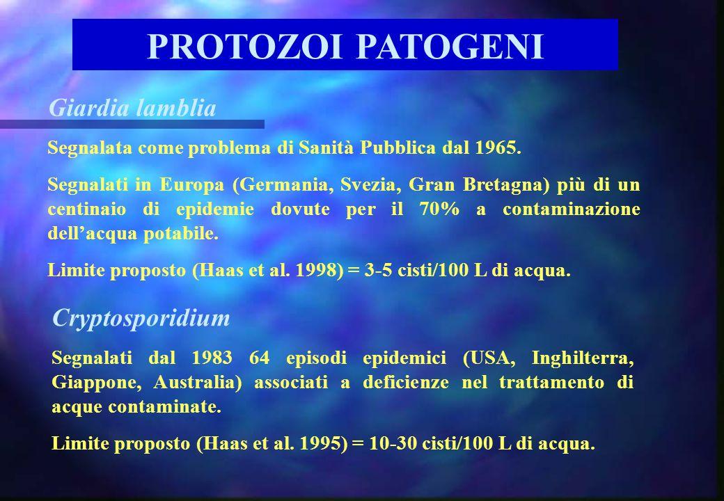 PROTOZOI PATOGENI Giardia lamblia Cryptosporidium
