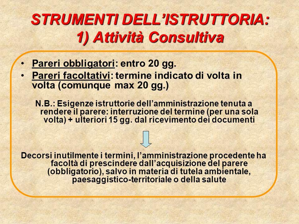 STRUMENTI DELL'ISTRUTTORIA: 1) Attività Consultiva