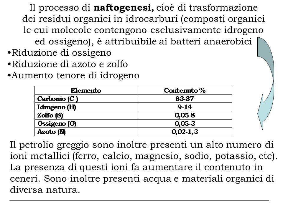Il processo di naftogenesi, cioè di trasformazione