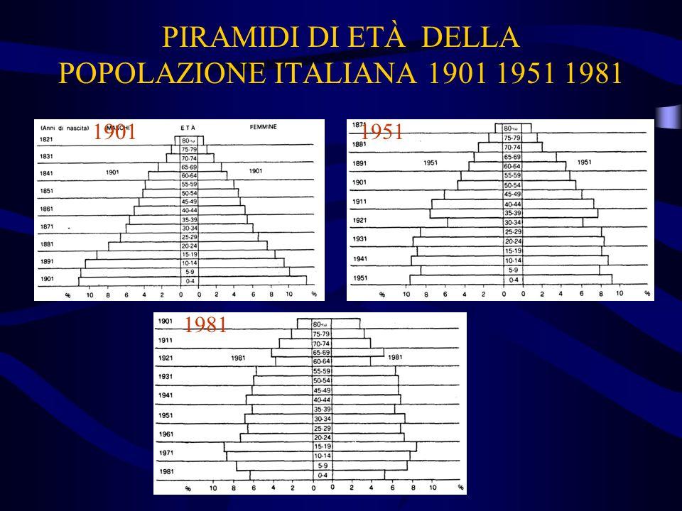 PIRAMIDI DI ETÀ DELLA POPOLAZIONE ITALIANA 1901 1951 1981