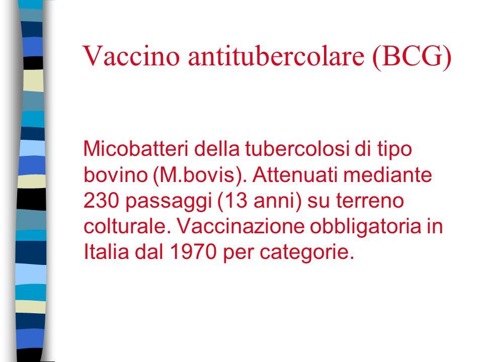 Vaccino antitubercolare (BCG)