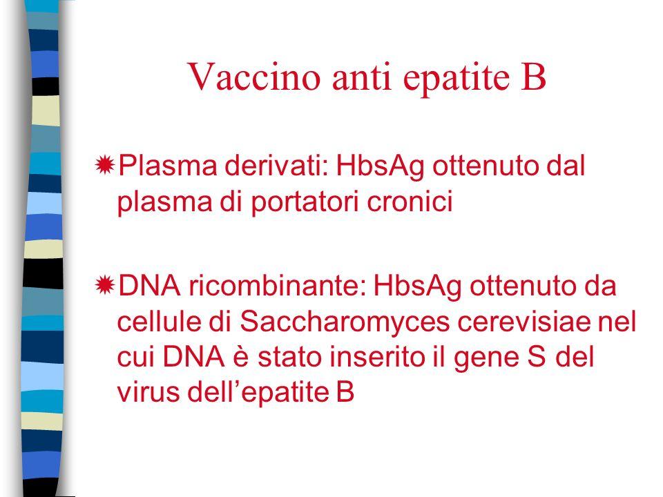 Vaccino anti epatite B Plasma derivati: HbsAg ottenuto dal plasma di portatori cronici.