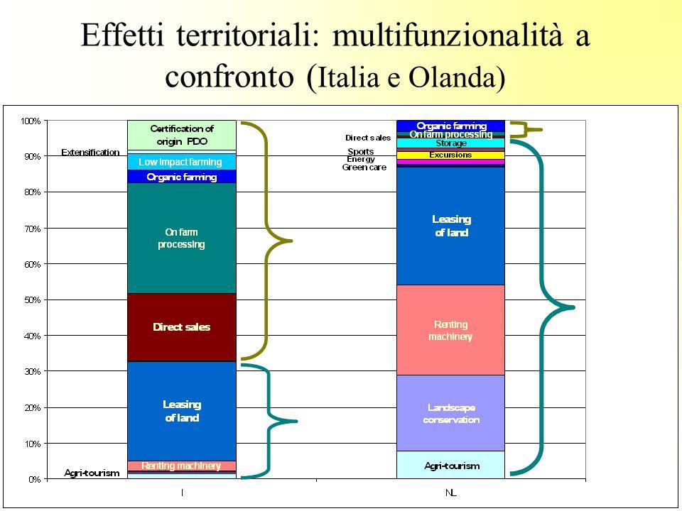 Effetti territoriali: multifunzionalità a confronto (Italia e Olanda)