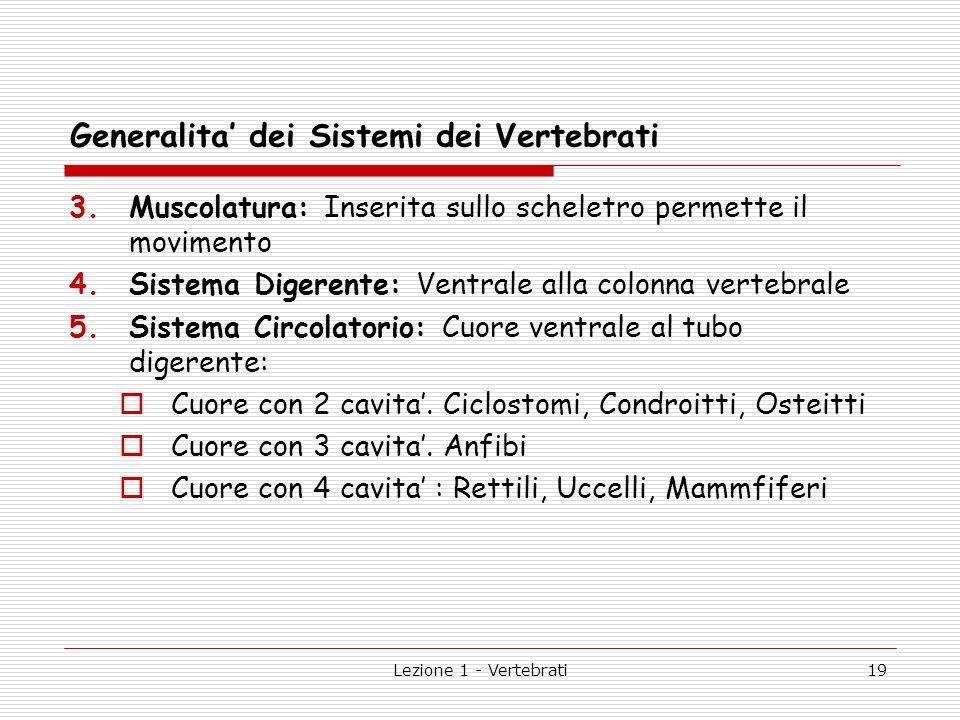 Generalita' dei Sistemi dei Vertebrati