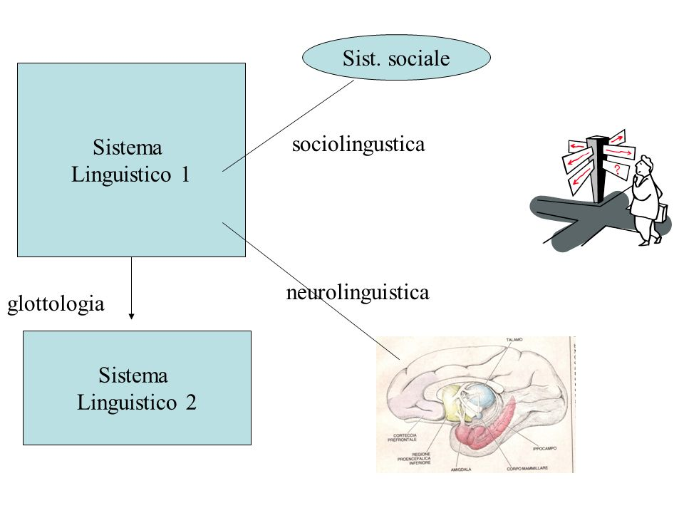 Sist.socialeSistema. Linguistico 1. sociolingustica.