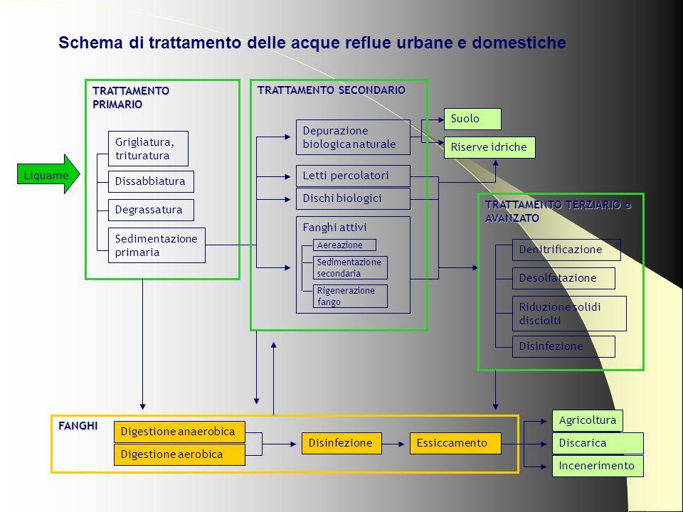 Schema di trattamento delle acque reflue urbane e domestiche