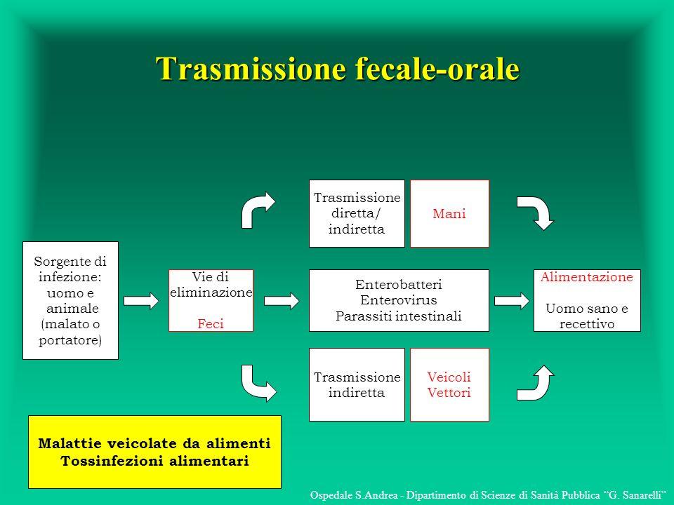 Trasmissione fecale-orale