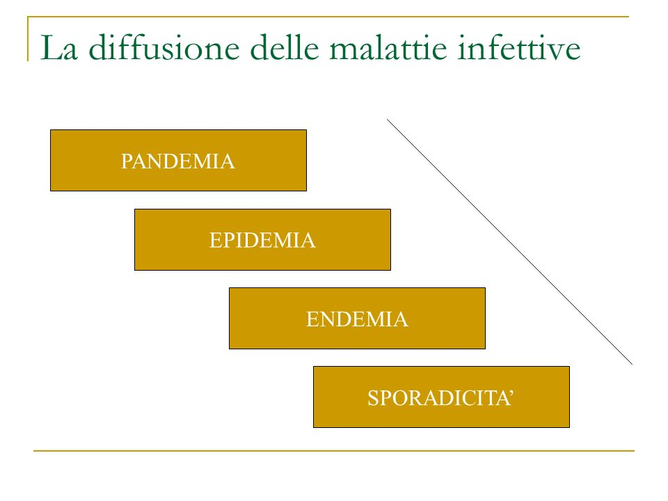 La diffusione delle malattie infettive