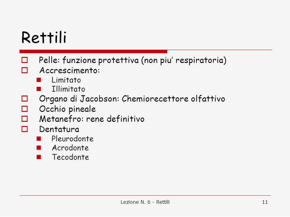 Rettili Pelle: funzione protettiva (non piu' respiratoria)