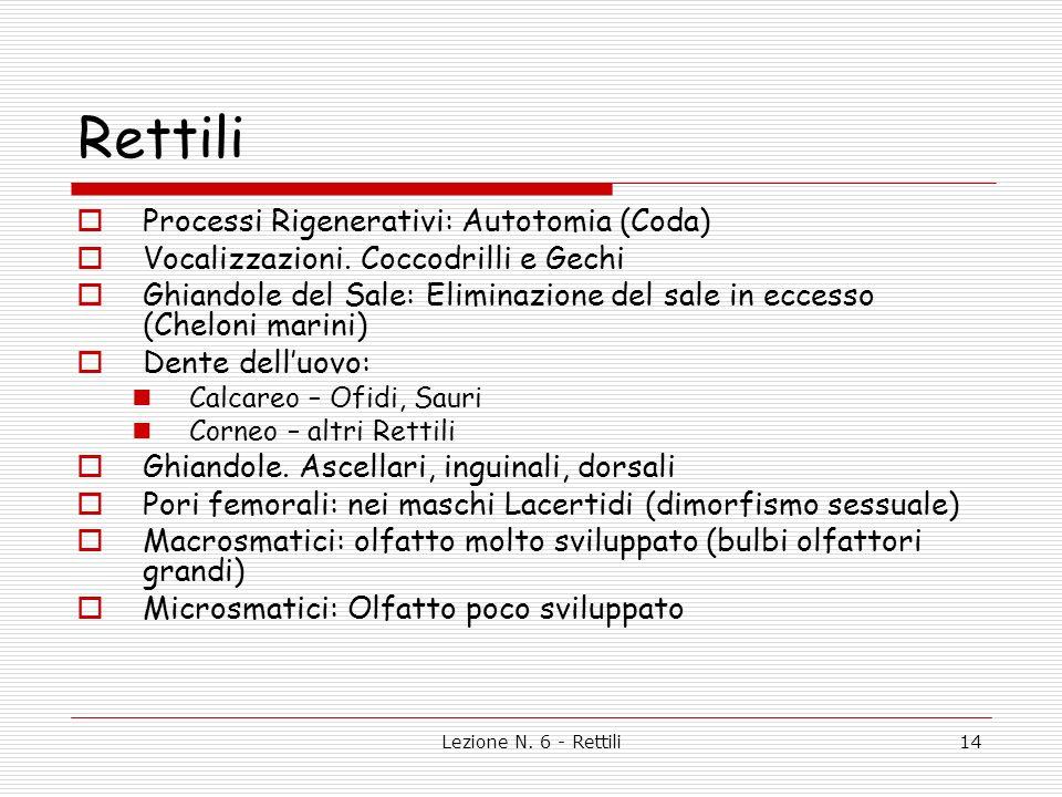 Rettili Processi Rigenerativi: Autotomia (Coda)