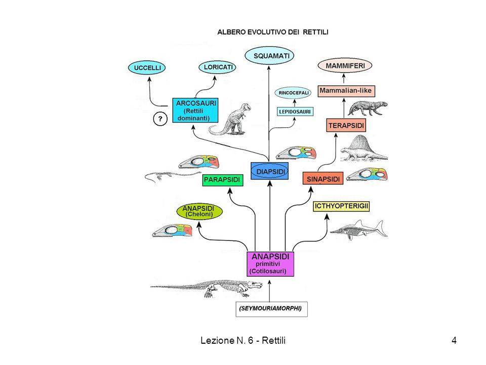 Lezione N. 6 - Rettili