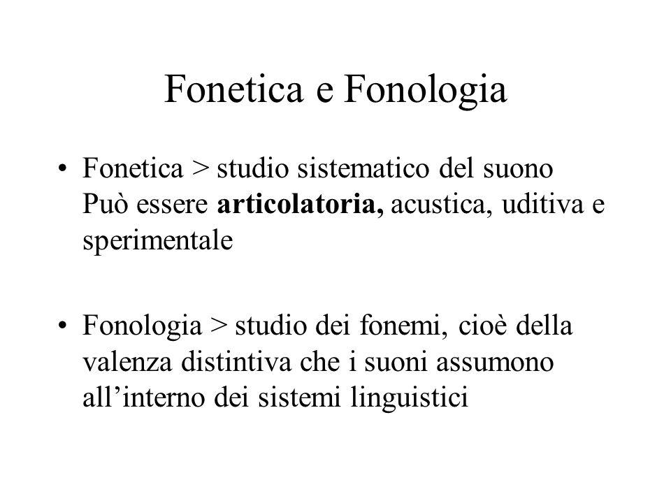 Fonetica e FonologiaFonetica > studio sistematico del suono Può essere articolatoria, acustica, uditiva e sperimentale.