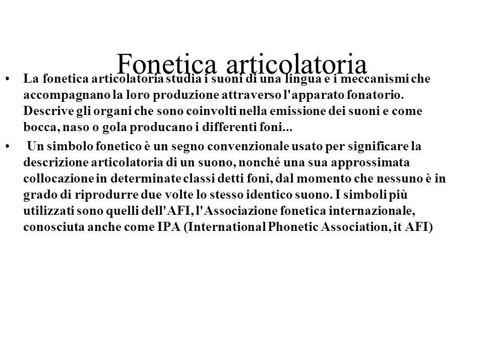 Fonetica articolatoria