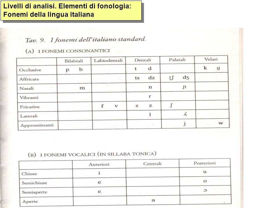 Livelli di analisi. Elementi di fonologia: Fonemi della lingua italiana