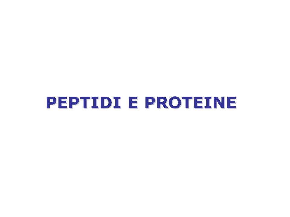 PEPTIDI E PROTEINE
