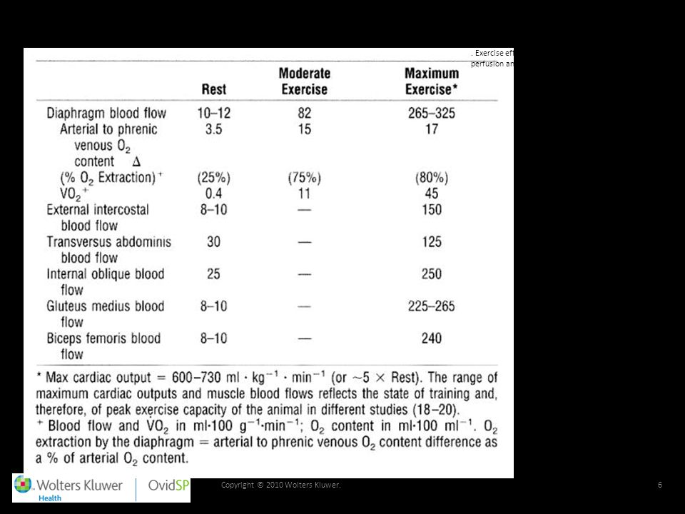 TABLE 1. Exercise effects on respiratory and locomotor muscle perfusion and oxygen uptake in the pony.
