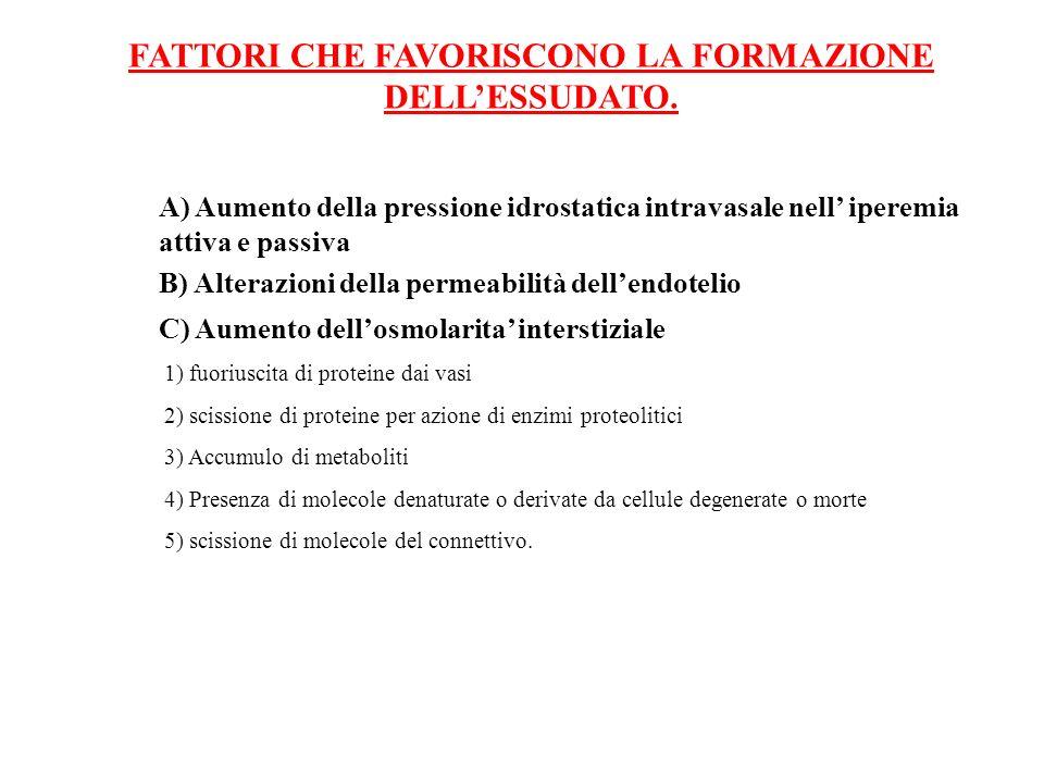FATTORI CHE FAVORISCONO LA FORMAZIONE DELL'ESSUDATO.