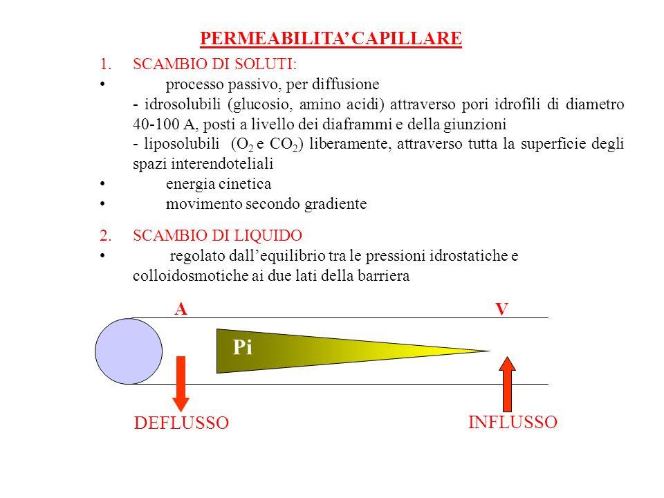 Pi PERMEABILITA' CAPILLARE A V DEFLUSSO INFLUSSO SCAMBIO DI SOLUTI: