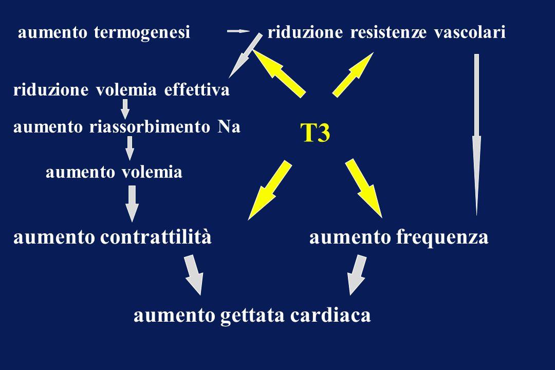 T3 aumento contrattilità aumento frequenza aumento gettata cardiaca