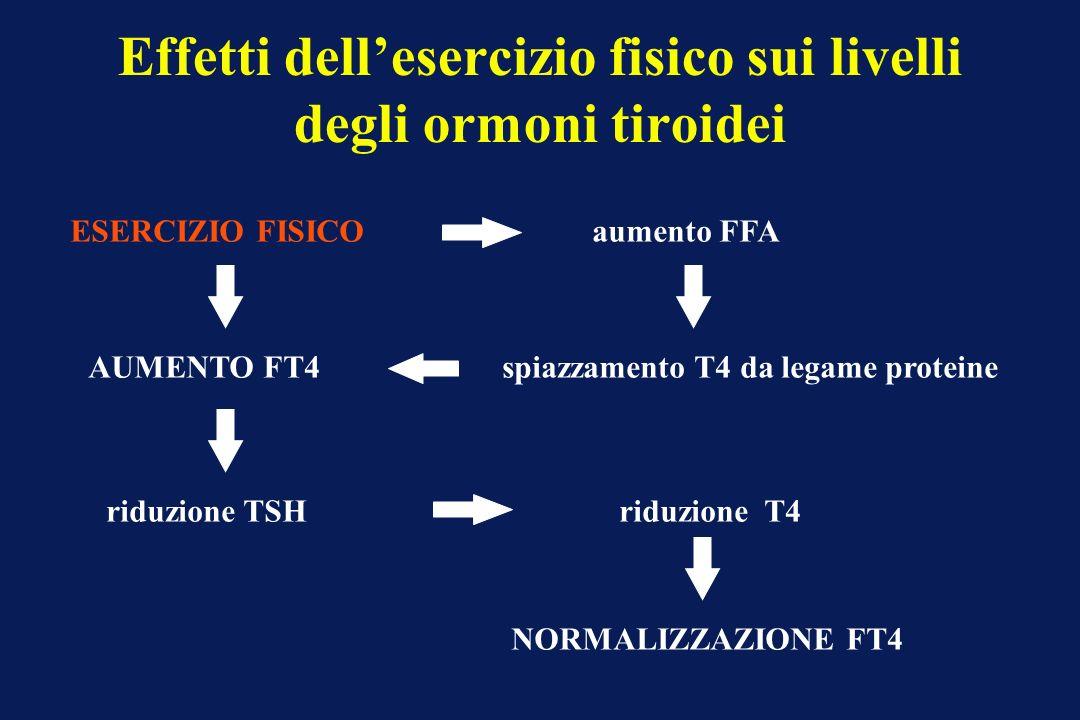 Effetti dell'esercizio fisico sui livelli degli ormoni tiroidei