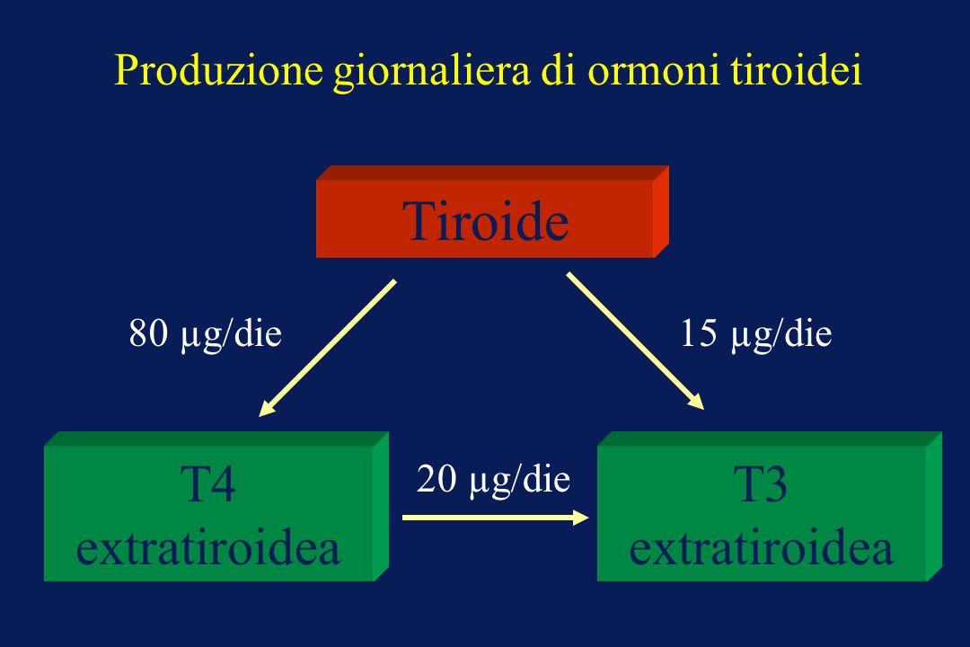 Produzione giornaliera di ormoni tiroidei