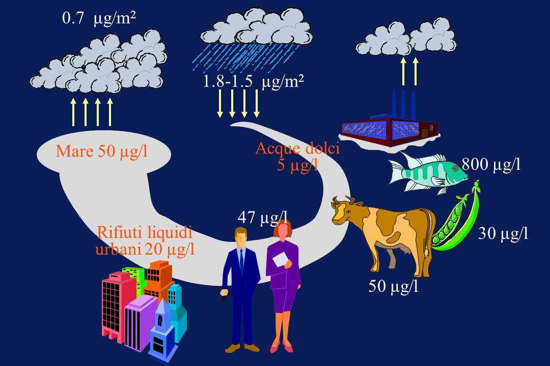 Rifiuti liquidi urbani 20 µg/l