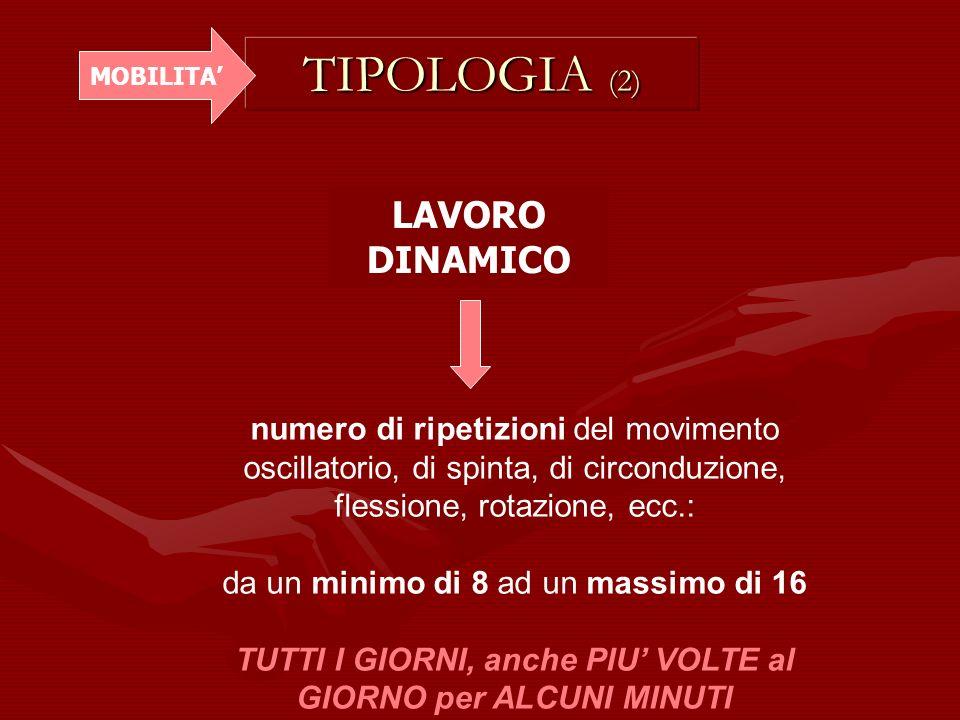 TIPOLOGIA (2) LAVORO DINAMICO