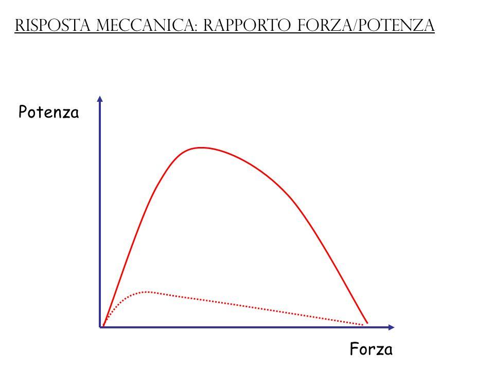 Risposta meccanica: rapporto forza/potenza