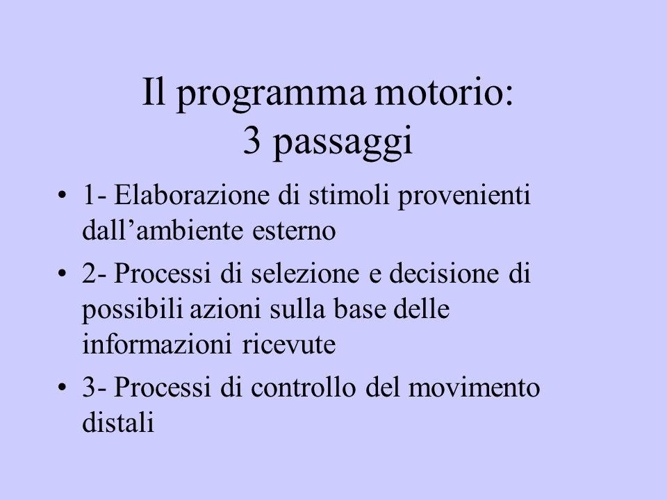 Il programma motorio: 3 passaggi