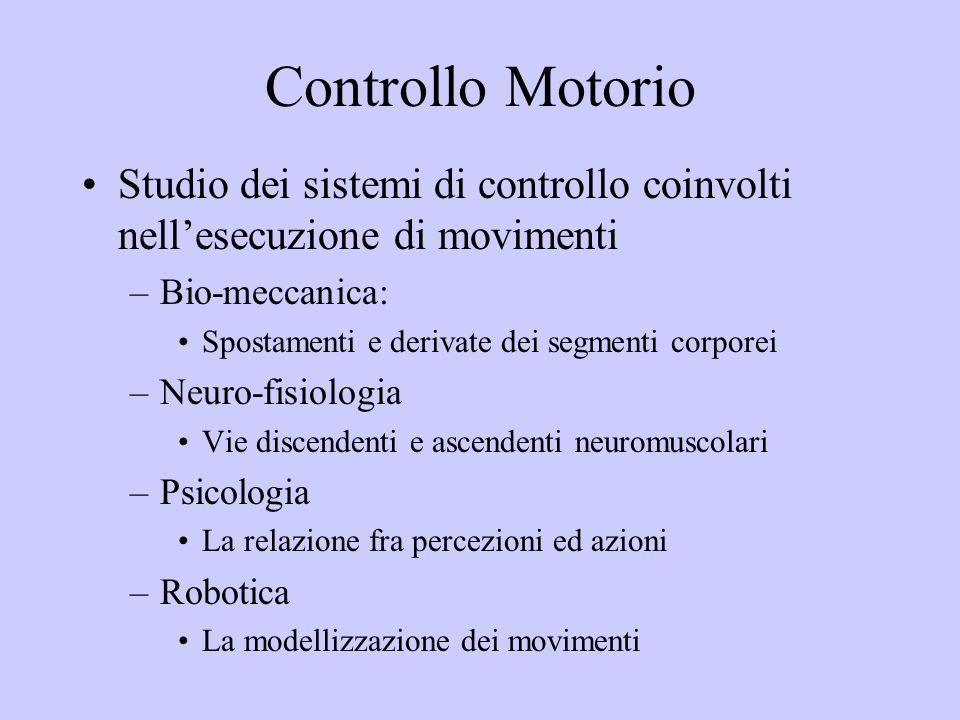 Controllo Motorio Studio dei sistemi di controllo coinvolti nell'esecuzione di movimenti. Bio-meccanica: