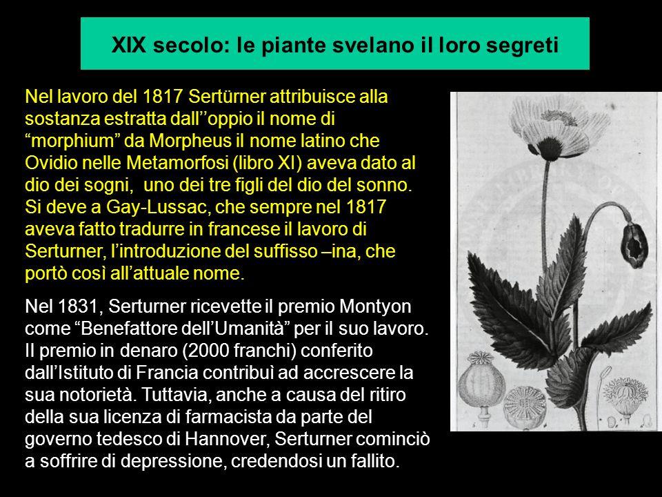XIX secolo: le piante svelano il loro segreti