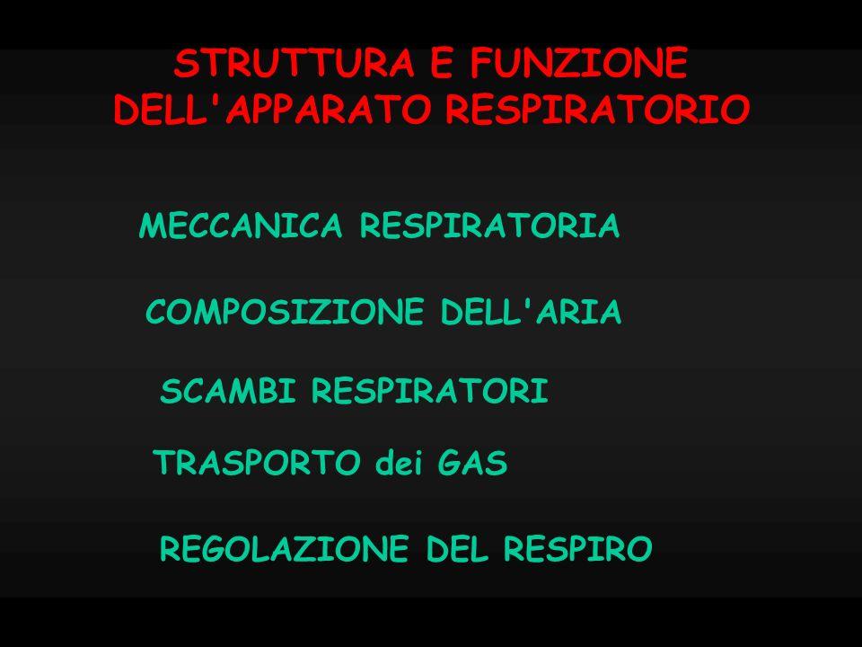 STRUTTURA E FUNZIONE DELL APPARATO RESPIRATORIO