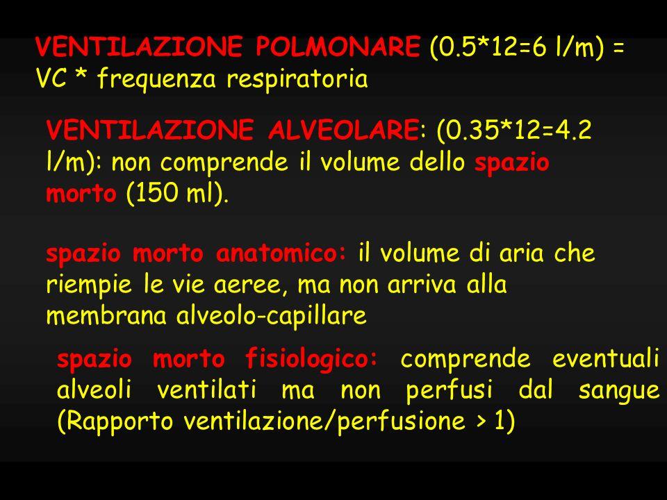 VENTILAZIONE POLMONARE (0.5*12=6 l/m) = VC * frequenza respiratoria