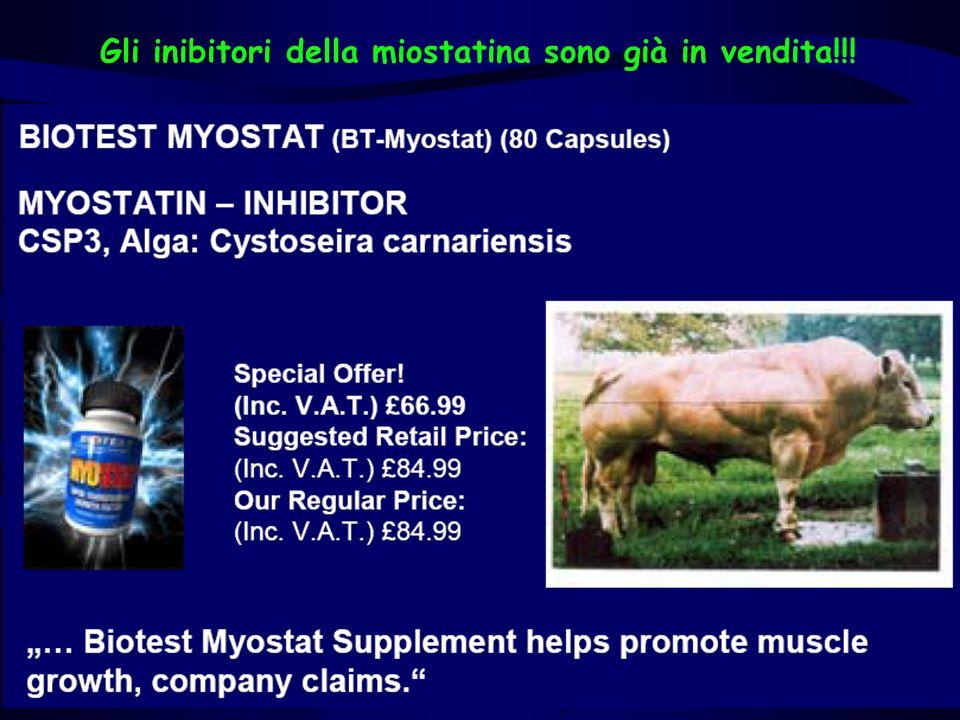 Gli inibitori della miostatina sono già in vendita!!!