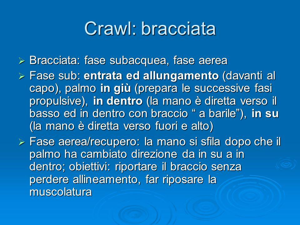Crawl: bracciata Bracciata: fase subacquea, fase aerea