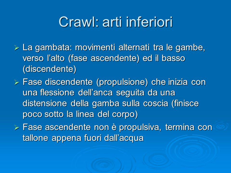 Crawl: arti inferiori La gambata: movimenti alternati tra le gambe, verso l'alto (fase ascendente) ed il basso (discendente)