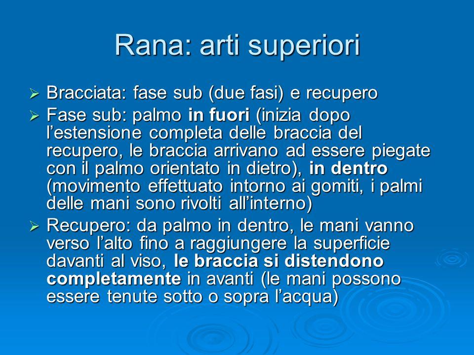 Rana: arti superiori Bracciata: fase sub (due fasi) e recupero