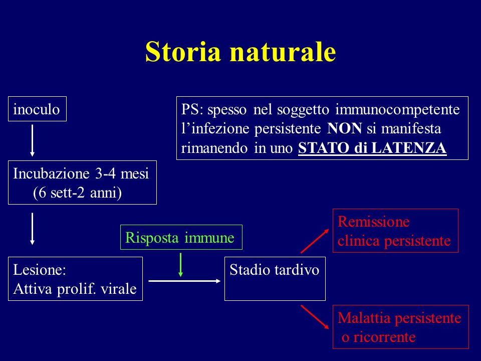Storia naturale inoculo PS: spesso nel soggetto immunocompetente