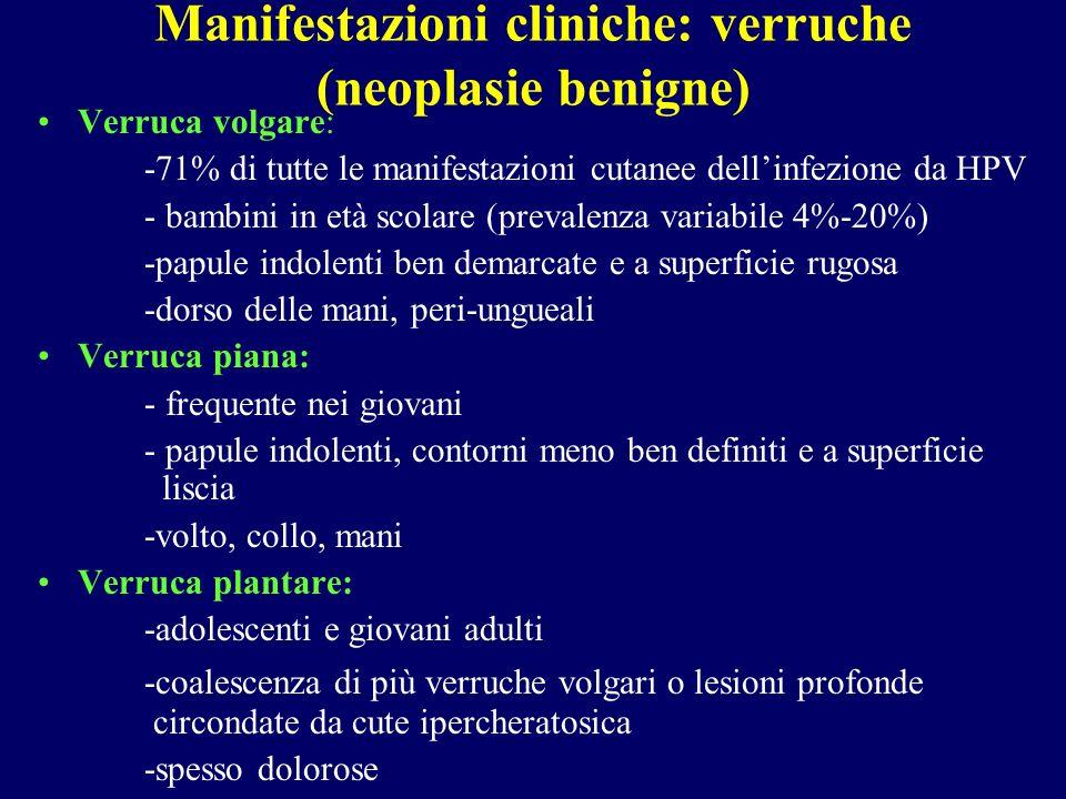 Manifestazioni cliniche: verruche (neoplasie benigne)